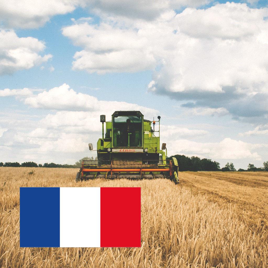 Adhésif fabrication française - Impression Edimag